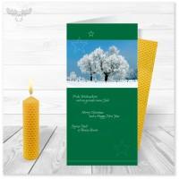 Winter-Weihnachtskarte in Grün mit Bienenwachskerze zum Selberdrehen